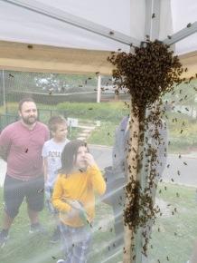 Bee Market 2019_009